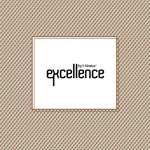 capa_excellence9